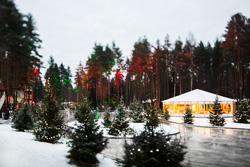 Лесной каток курорта Охта Парк