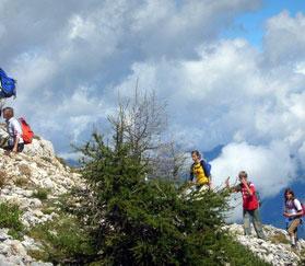 Пешие прогулки, экскурсии и походы