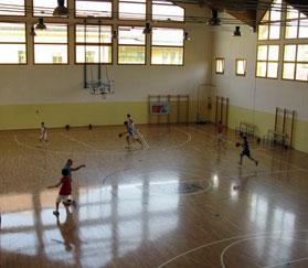 Взалы и площадки для волейбола и баскетбола